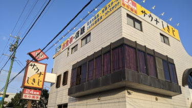 新幹線で行く静岡日帰り旅行記 – 草薙球場,さわやか,サウナしきじ